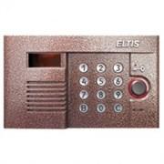 Вызывная панель Элтис DP300-RD16