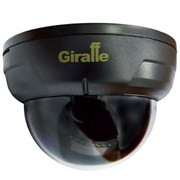 Видеокамера Giraffe GF-D4322HD