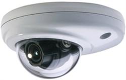 Видеокамера Smartec STC-IPMX3491/4 - фото 9164