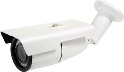 Видеокамера Smartec STC-IPMX3694/1 - фото 9169