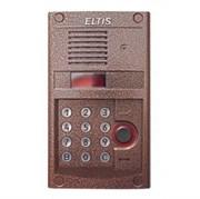 Вызывная панель Eltis DP303-RDC24