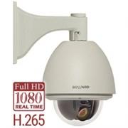 Видеокамера Beward B85-20H2