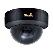 Видеокамера Giraffe GF-D4322HDN-VF