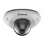 Видеокамера Tantos TSi-De43FPM (2.8)